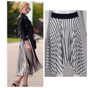 Zara Stripe Pleated Accordion Skirt